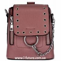 Женская сумка-рюкзак Арт. 6928 Цвет Терракот